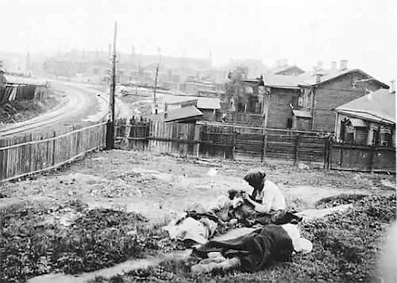 Holodomor: Ukraine's Genocide of 1932-33 (2008)