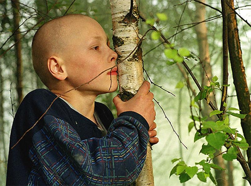 Torn (2003)